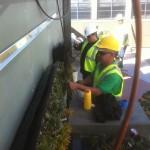 Good Earth Plant Co_Jim Mumford_11_Jefferson Law_Pic7