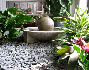 Interiorscapes By The Plant Market_Luke Struve_12_Private Residence_Pic3