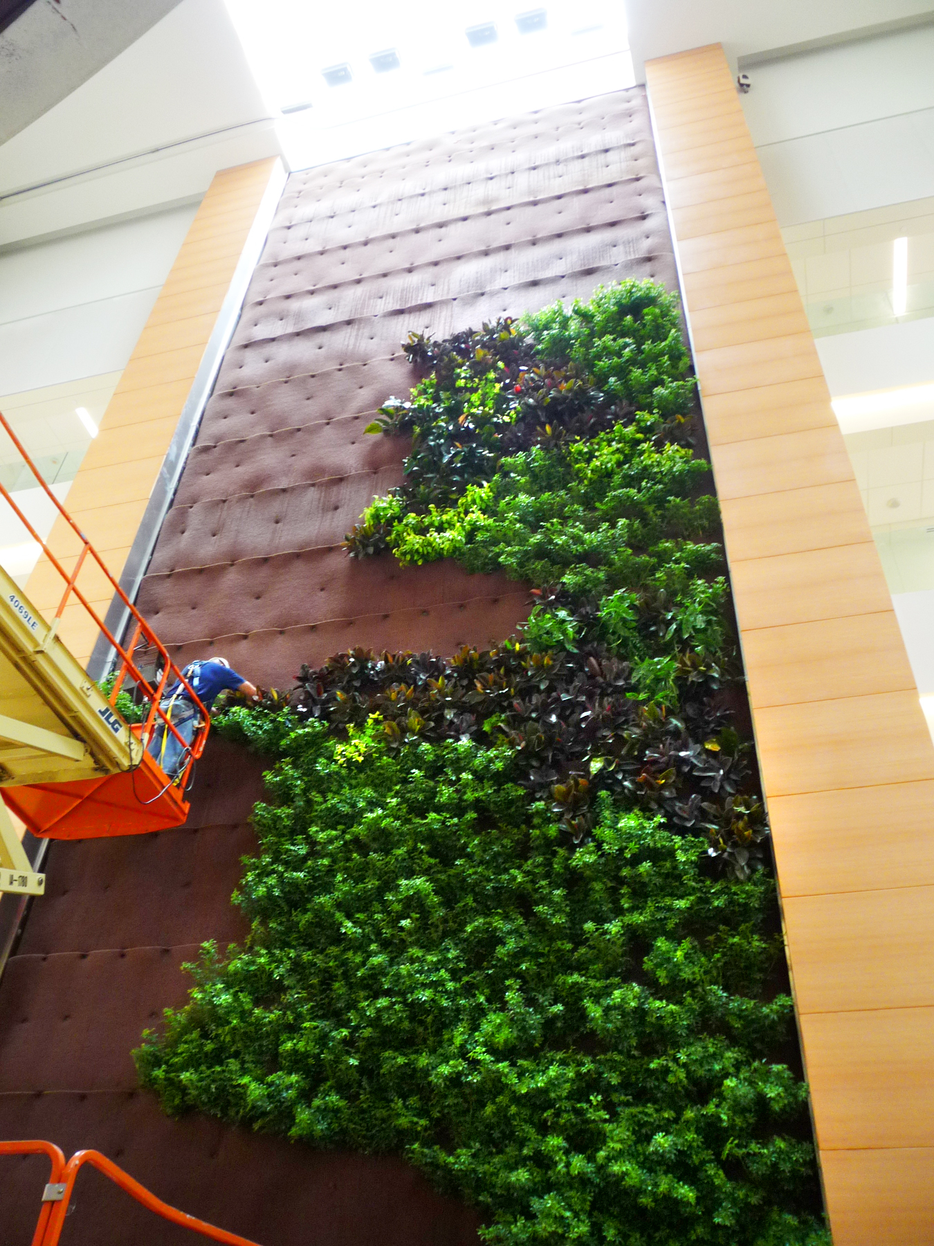 Parker Interior Plantscapes, Inc._Tom Walsh_12_Pic2