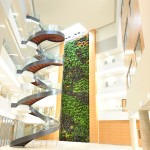 Parker Interior Plantscapes, Inc._Tom Walsh_12_Pic3