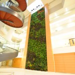 Parker Interior Plantscapes, Inc._Tom Walsh_12_Pic7