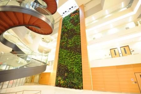Parker Interior Plantscapes, Inc._Tom Walsh_12_Pic7