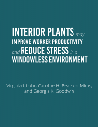 Interior Plants Improve Worker Productivity