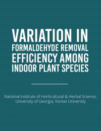 indoor plant species