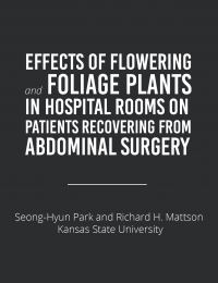 plants in hospital rooms