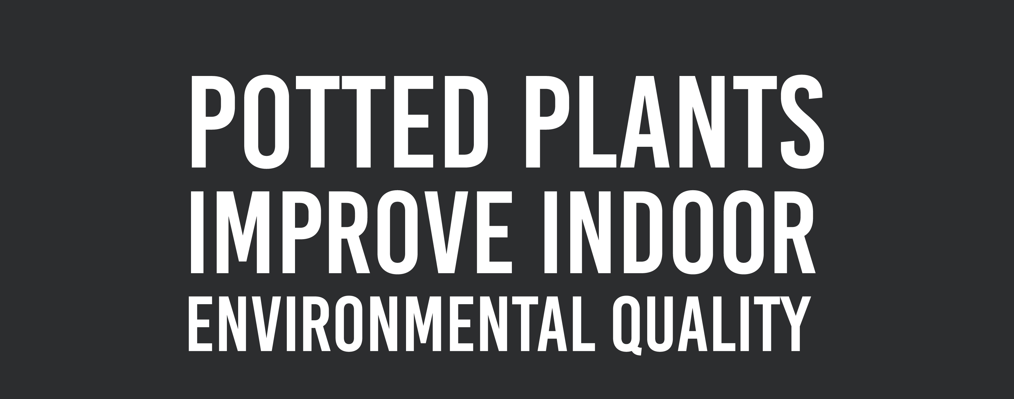plants improve indoor environment