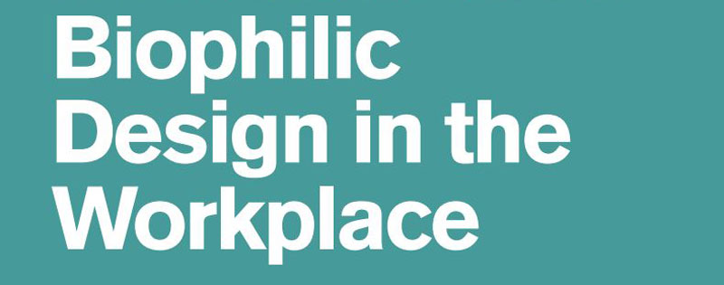 Biophilic Design in the Workplace