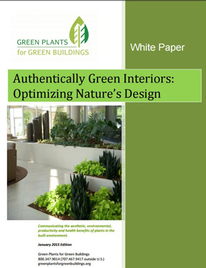 Authentically Green Interiors Whitepaper