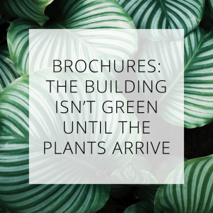 Buildings isn't green until plants arrive