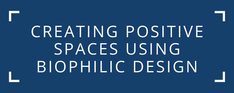 Creating Positive Spaces Using Biophilic Design