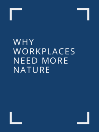 why workplaces need more nature