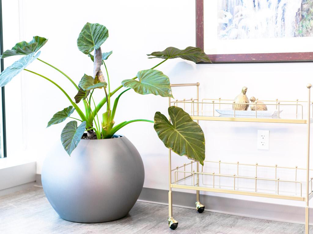 fiberglass planters wholesale