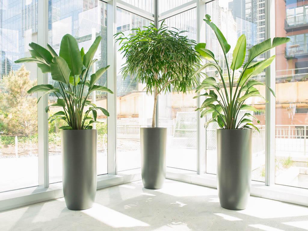 commercial indoor fiberglass planters