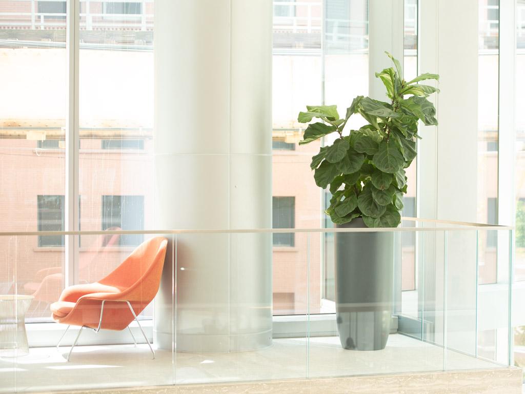 indoor fiberglass planters