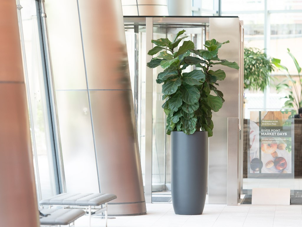 wholesale fiberglass planters