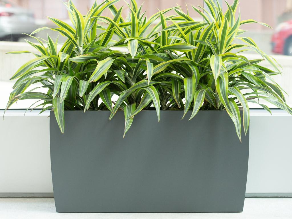 fiberglass rectangle plant container