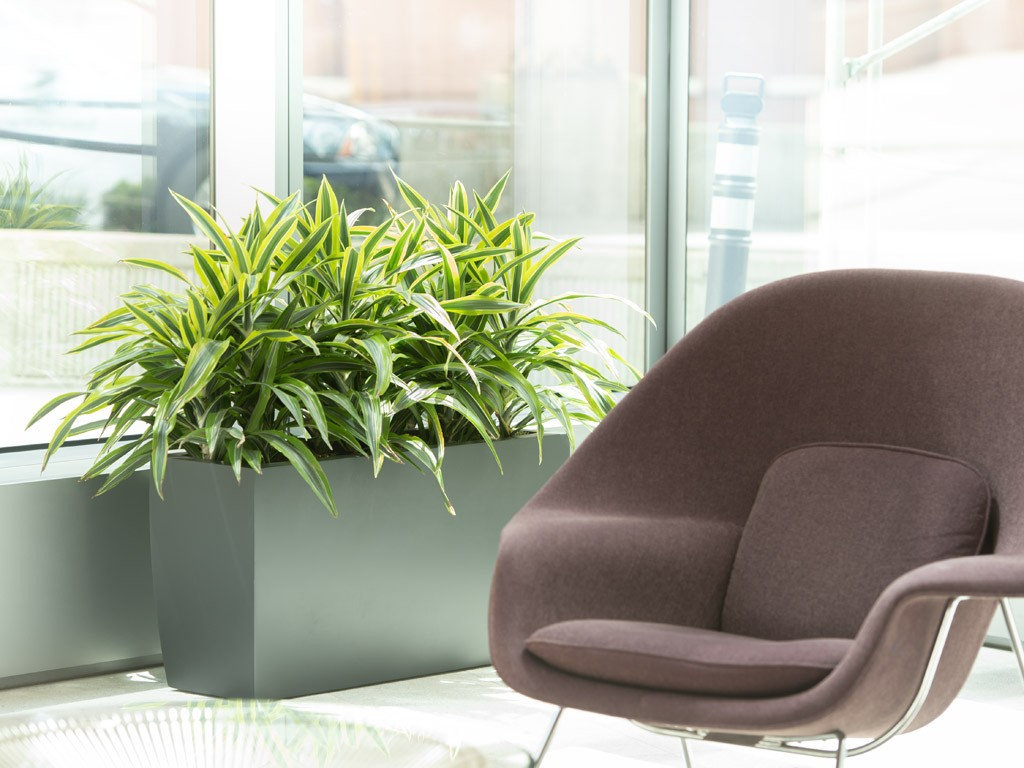 wholesale indoor plant containers